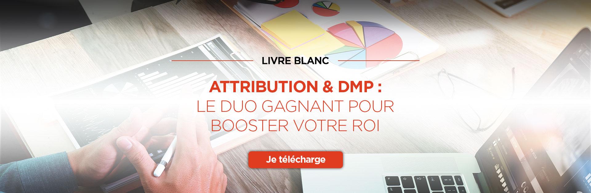 Livre Blanc : Attribution & DMP