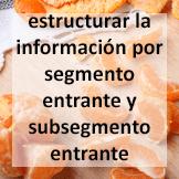 Tips - Estructurar la información por segmento entrante y subsegmento entrante